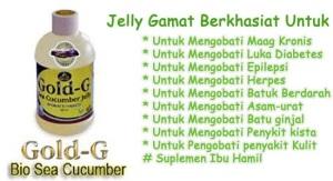khasiat dan manfaat jelly gamat